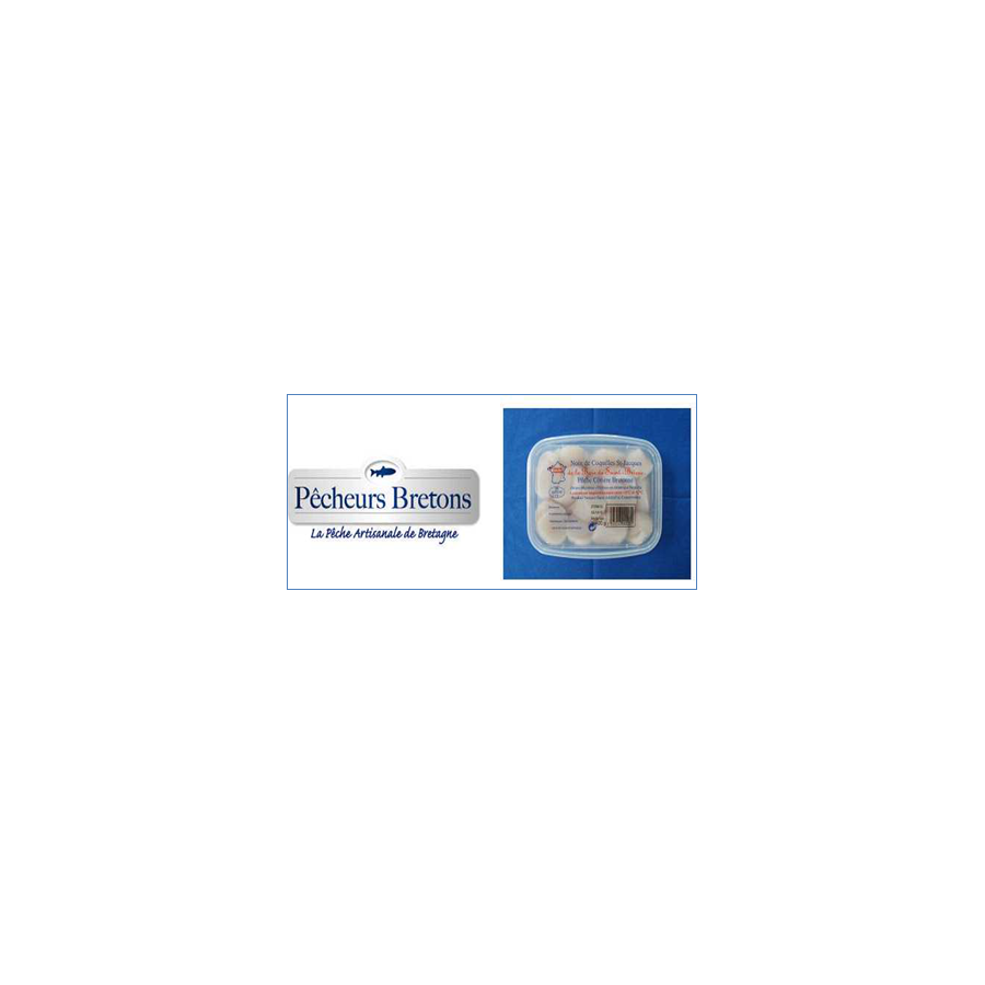 Noix de Saint Jacques Bretonne lot de 1 kg