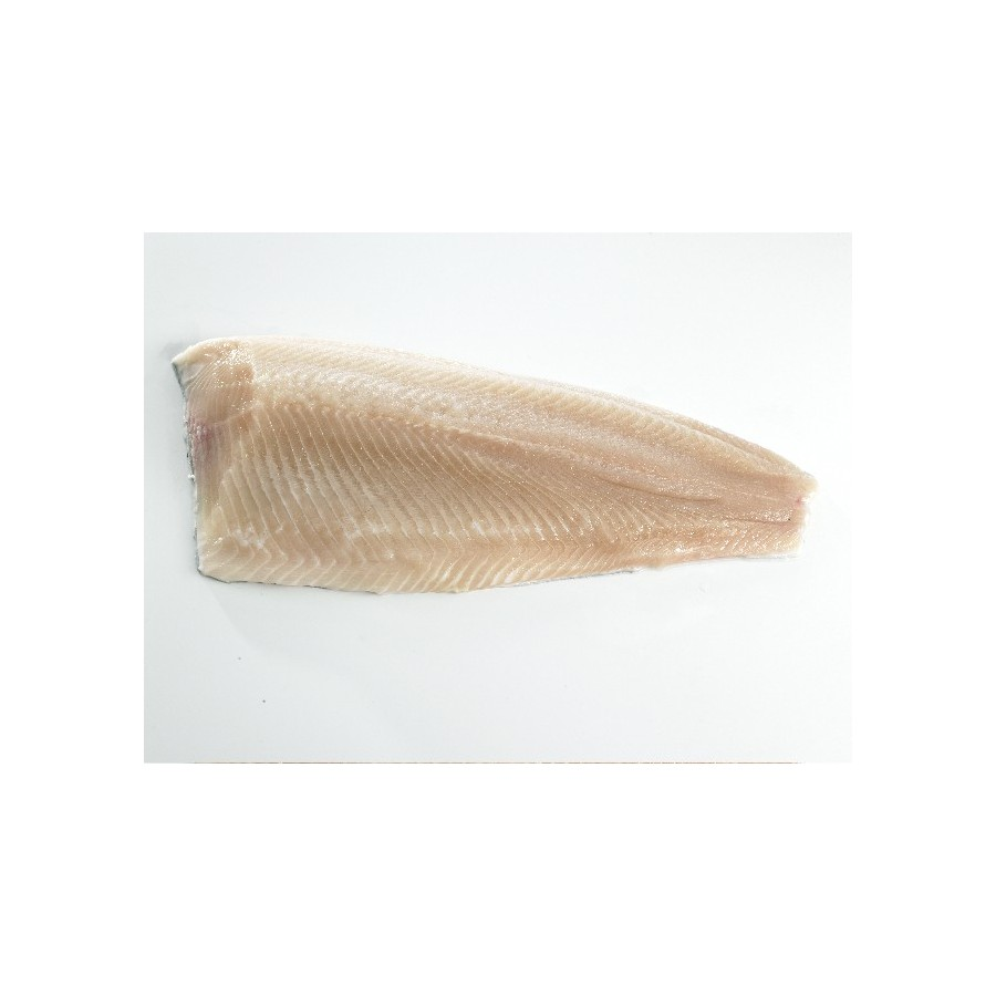 Filet de Truite Fario lot de 1 kg (Salmo Trutta)