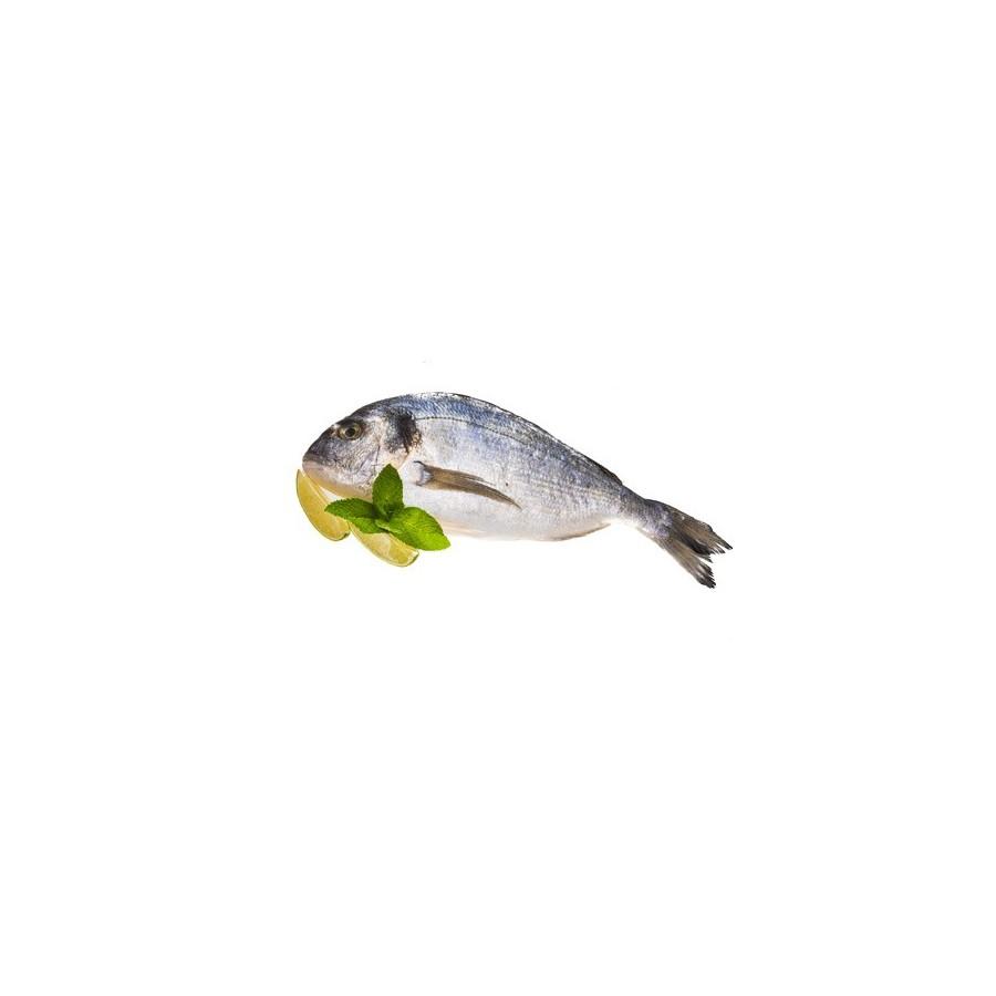 Daurade Royale 200 gr lot de 2 pièces-poisson frais