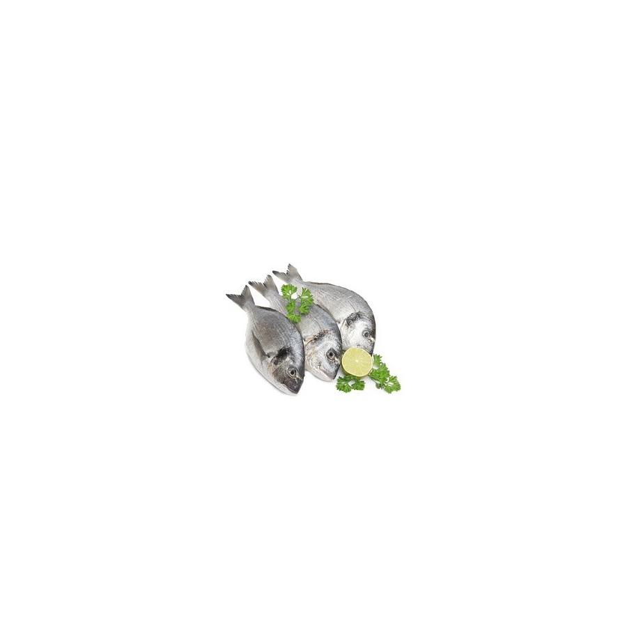 Daurade bio 400/600 lot de 5 pièces-poisson frais