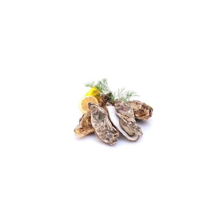 48 Huîtres Spéciales Courdavault N 3 (Crassostréa gigas)