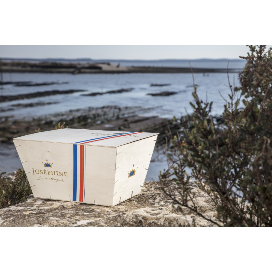 vente huitre en ligne 48 Huîtres Gillardeau N°3