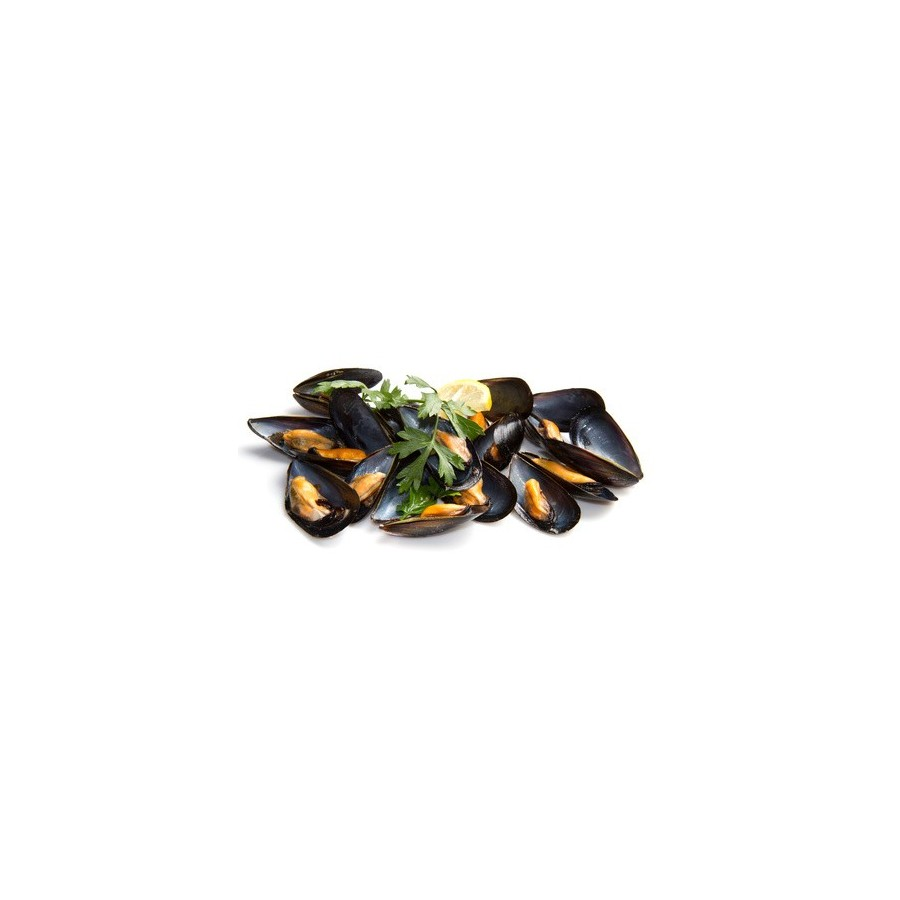 Moule de Hollande lot 4 kg